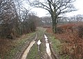 Byway to the A2070 - geograph.org.uk - 1720879.jpg