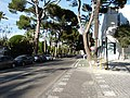 Cádiz parks 2020 13.jpg