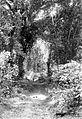 COLLECTIE TROPENMUSEUM Eiland Enggano Margaweg tussen Poeloedoea en Kyah TMnr 10008021.jpg