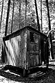 Cabin in the woods (2805661194).jpg