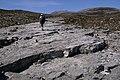 Cambrian Quartzite - geograph.org.uk - 425208.jpg