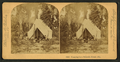 Camping in Palmetto Forest, Florida, by Littleton View Co. 2.png