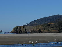 Cannon Beach Monthly Rentals