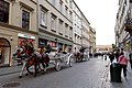 Carriage Horses (239522579).jpeg