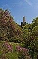 Catino torre in primavera.jpg