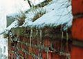 Cemetery Pniewy, 01.1993r.jpg