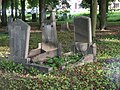 Cemetery in Brętowo - panoramio - Sławek Zawadzki (13).jpg