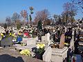 Cemetery in Czeladz.JPG
