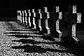 Cemetery of Lebbeke Belgium 04.jpg