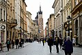 Central Krakow (239656159).jpeg