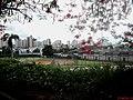 Centro da cidade de Catanduva visto da Praça jornalista Lecy Neubern Pinotti, já conhecida como Praça do Idoso, no São Francisco. Esta praça é utilizada para a tradicional Feira Regional de Artesanato - panoramio.jpg