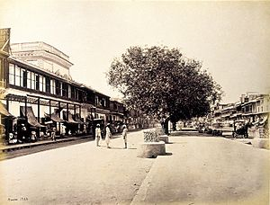 Chandni Chowk - Chandni Chowk in the 1860s