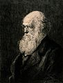 Charles Darwin in old age, head and shoulders, facing left. Wellcome V0018953.jpg