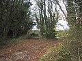Charlton Park woodlands - geograph.org.uk - 1587076.jpg