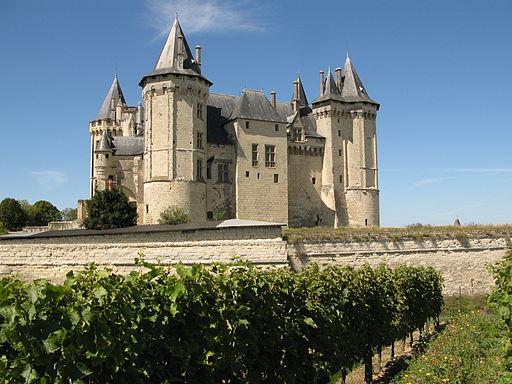 Chateau de Saumur depuis les vignes