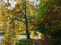 Chellow Dean reservoir (2078268581).jpg