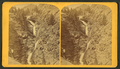 Cheyenne falls, 330 feet high. Six miles from Colorado Springs, by Gurnsey, B. H. (Byron H.), 1833-1880.png