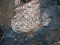 Clast-rich impact pseudotachylite (Sudbury Breccia, Paleoproterozoic, 1.85 Ga; Windy Lake Northwest roadcut, Sudbury Impact Structure, Ontario, Canada) 59 (33881174488).jpg