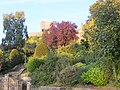 Clitheroe Castle gardens 8264.JPG