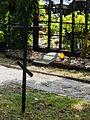 Cmentarz wojenny z I i II wojny światowej Częstochowa ul św Rocha ------- 11.JPG