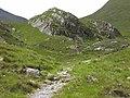 Cnoc Dubh Achadh Arsgalain - geograph.org.uk - 1380875.jpg