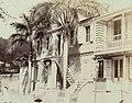 Collectie Nationaal Museum van Wereldculturen TM-60062193 Een huis met palmbomen ervoor Trinidad fotograaf niet bekend.jpg