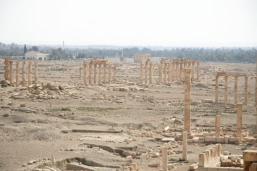 Columns and space in Palmyra