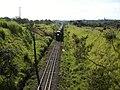 Comboio que passava sentido Guaianã na Variante Boa Vista-Guaianã km 205 em Salto - panoramio.jpg