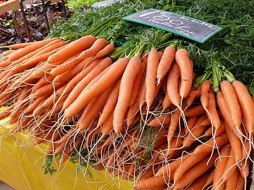 Coustellet carottes nouvelles