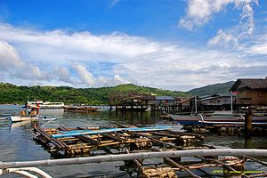 Culion - Fishing boats in Culion