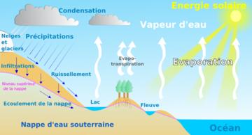 Cycle de l'eau.png