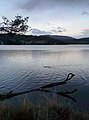 Cygnet, Tasmania.jpg
