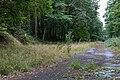 Dülmen, Kirchspiel, ehem. Munitionslager Visbeck -- 2020 -- 8846.jpg