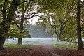 Dülmen, Wildpark -- 2014 -- 3830.jpg