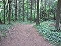 Dūkštų sen., Lithuania - panoramio (83).jpg