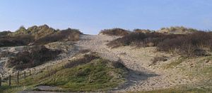 Fort-Mahon-Plage - Sand dunes
