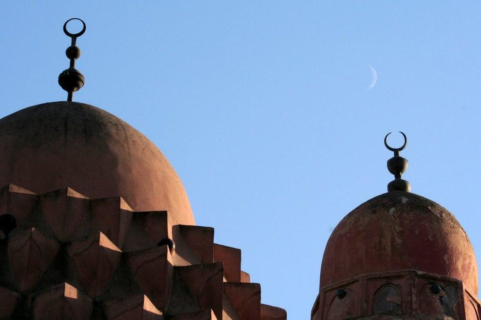 Damascus domes