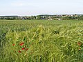 Daussois - Village - JPG 8652013.jpg