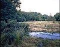De Demervallei, beheer hooiland in het gebied Vorsdonk - turfputten - 354757 - onroerenderfgoed.jpg