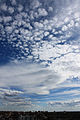 De Madrid al cielo 178.jpg