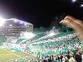 Deportivo Cali - millonarios Semifinal 2015-I 20.jpg
