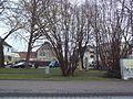Der Lichtensteinplatz in Enger (19.02.2016).jpg