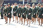Desfile cívico-militar de 7 de Setembro (20601169363).jpg