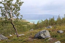 Distant view towards Akkajaure.jpg