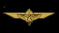Distintivo do Curso de Observador Aéreo.png