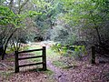 Disused gateway to Ravens Nest Inclosure, New Forest - geograph.org.uk - 251143.jpg