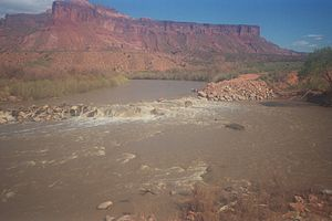 Dolores River - Image: Diversion Dam Rapid
