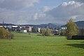 Dlouhoňovice, pohled na Žamberk.jpg
