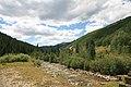 Dolores River near Rico Colorado.jpg