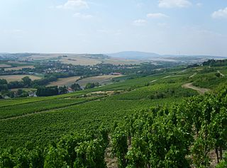Middle Pfrim valley between Harxheim and Albisheim;  on the left the Saukopf / Gauberg (around 300 m) with Immesheim on the slope, on the right the Hungerberg plateau (up to 303.2 m; wind turbines);  in the background Donnersberg (687 m, center) and Kuhkopf (430 m, right) immediately west of Kirchheimbolandens in the North Palatinate Uplands